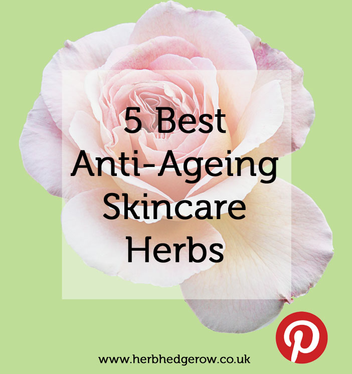 Anti-Ageing Herbs for Skincare
