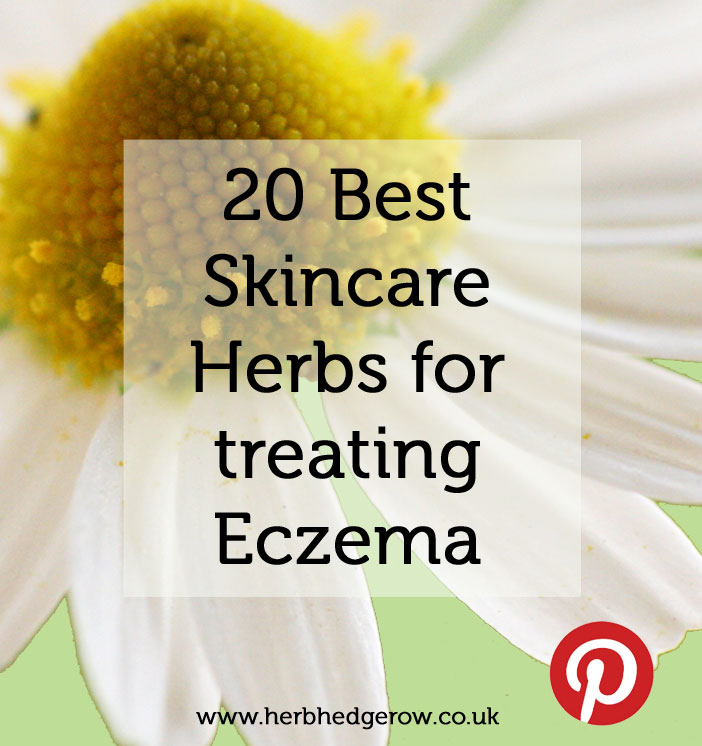 20 best herbs for treating eczema