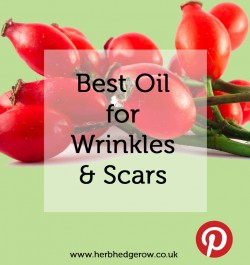 Best Oil for Wrinkles & Scars