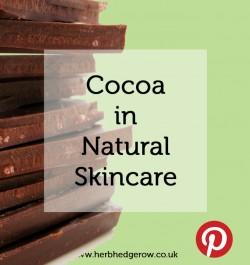 Cocoa in Natural Skincare