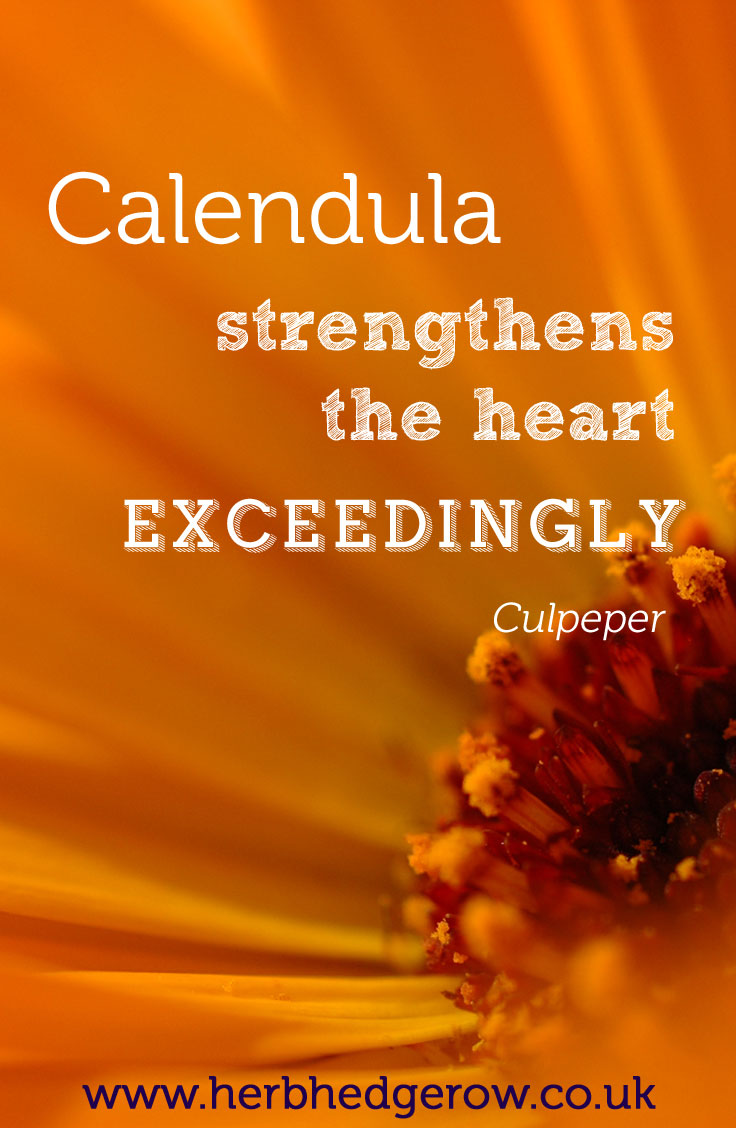 Herbal Quote Calendula Culpeper