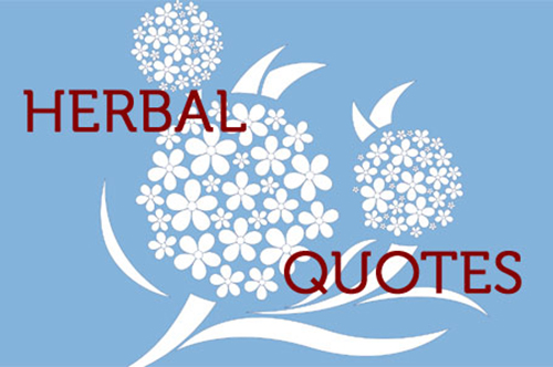 8 Great Herbal Quotes